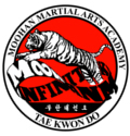 Moohan Taekwondo Martial Arts East Cumming